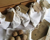 Herb Garden Seed bomb kit (READY TO SHIP) -- 6 different herbs, 30 seed bombs total