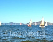 San Francisco Bay, Sailing, Powder Blue Sky, Cobalt Blue Water, 8 x 12 Photo, 16 x 24, Sail Boats, Sunshine, Nautical Wall Decor,Yacht Print