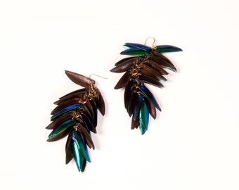 Beetle Wing Earrings (medium)
