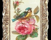Song Bird On A Rose  Miniature Dollhouse Art Picture 1066