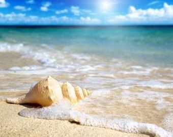 BODY SCRUB ~ Sun and Sand type Body Scrub Sugar or Sea Salt Body Polish 8 oz