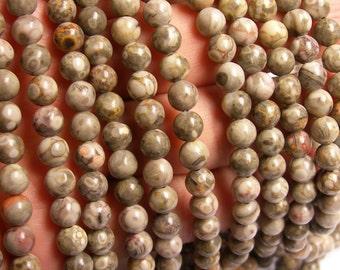 Fossil Jasper - 6mm  round beads -1 full strand - 61 beads - RFG1140