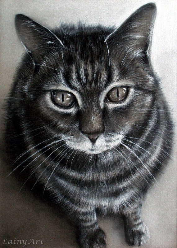 Cat Drawings besides Cheshire Cat 414164018 besides Foxy 479357236 also Watch in addition How To Draw A Cat Head  Draw A Realistic Cat. on how to draw realistic cats real