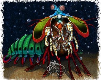 Mantis Shrimp Daily Creature Print