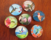 HUMMINGBIRD GLASS MAGNETS