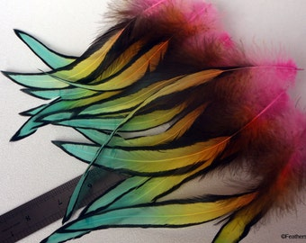 Decorative Dreamcatcher Feather Rainbow Gradient Large Laced Rooster Feathers Arts and Craft Feathers Uniquely Dyed Feathers Multicolor x6