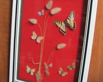 Vintage Avant Garde Butterfly and Botanical Specimen Picture - Wall Hanging - Art - Home Decor - Lepidopterist - Hand Crafted - Collectible