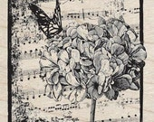 HYDRANGEA COLLAGE - Rubber Stamp - Hampton Art Wood Mounted Rubber Stamp flowers butterfly music notes card making scrapbooking supplies
