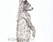 THANK YOU, Bear Note Card, Black Bear, Bear Decor, Bear Drawings, Thank You Cards, Ellen Strope, Blank Cards, Paper Products