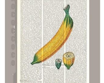 BANANA Illustration Print on Vintage Dictionary Book page -  Kitchen decor, Botanical art, Artwork