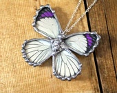 Purple Tip Butterfly, Real Butterfly Necklace