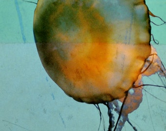 Jellyfish Abstract Photograph, Sea Green Teal Orange Print, Ocean Life, Sea Creature 8x10