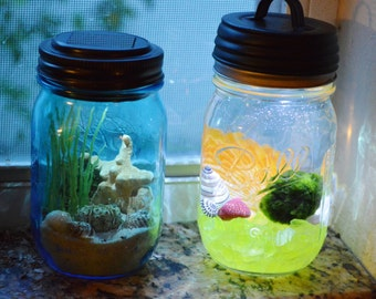 Nightlight Marimo Moss Ball Aquatic Terrarium ~ Ball Jar w/ Solar powered Lid ~ Dorm Room ~ Home or Bath Decor ~ Gift ~ Child's Nightlight