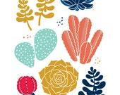 """Succulents 8""""x10"""" print cactus"""