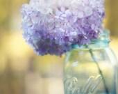Hydrangea Photography Flowers in a Mason Jar Rustic Purple Flower Art Botanical Print Lavender Yellow Aqua Pictures of Hydrangeas Photo