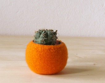 Felt succulent planter / felted bowl / Succulent pod / pumpkin orange / festive decor