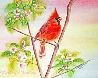 Red Cardinal Bird Original Watercolor Painting, matted to 11x14