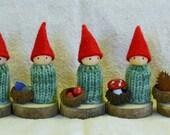 Autumn/Winter Gnome Peg Doll