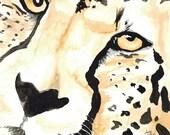 Big Cat Close Ups in Watercolor Squares