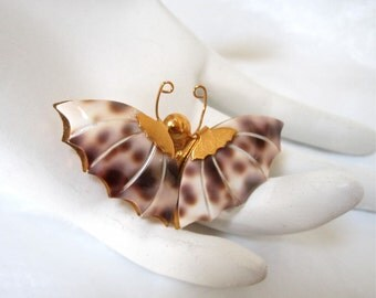 Vintage Butterfly Pin Brooch from leopard cowry shell