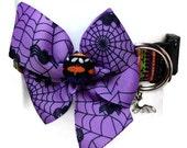 Halloween Spiders and Stripes Dog Collar size Medium