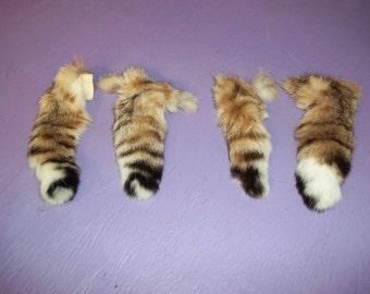 Real animal part Tanned bobcat tail Fur Pelt skin part taxidermy regalia reenactor