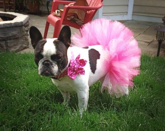 Dog Tutu:  Mix of Pinks (Fuscia Pink, Bubblegum Pink, Baby Pink)  - Small, Medium, Large Dog Tutu - Valentine's Day Tutu
