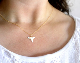 Dainty Shark Tooth Necklace, Real Shark Tooth Pendant, Gold Shark Tooth Necklace, Delicate Gold Necklace, Genuine Shark Tooth Necklace