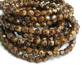 Stone Chocolate Brown Picasso finish fire polished Czech glass faceted round beads 6mm half strand NFP6-82