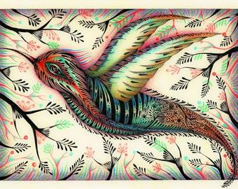 THE HIDDEN HUMMINGBIRD (limited edition print) 8/50