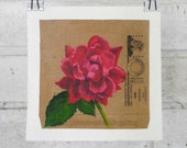 Rose mini painting red pink knockout rose acrylic painting on upcycled recycled envelope junk mail 5x5 still life flower