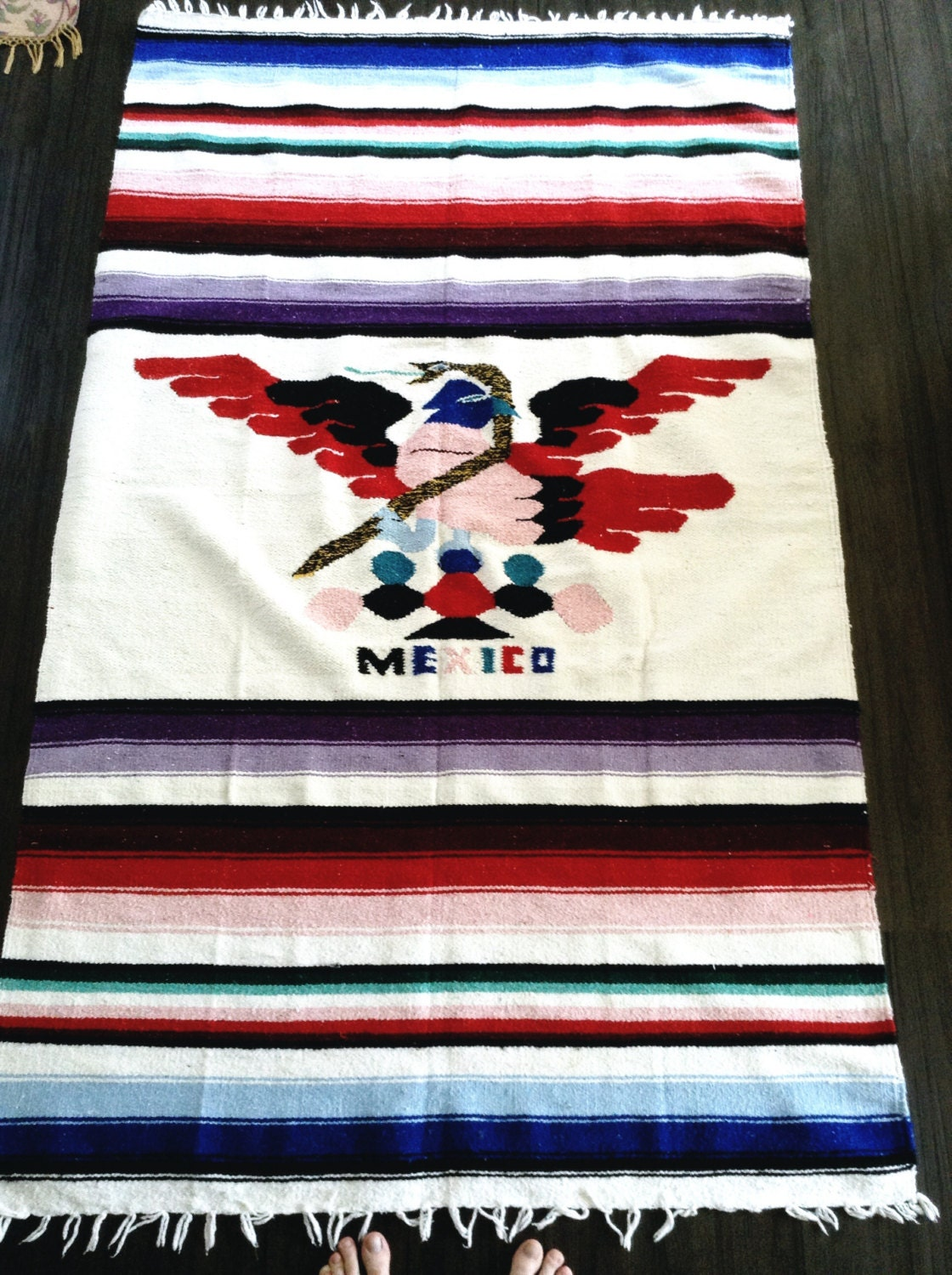 Opinion, Vintage mexican blanket Dick Chick