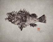SCORPION FISH (izu kasago) - GYOTAKU print - traditional Japanese fish art - by dowaito