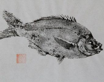 Japanese Sea Perch (Umi Danago)  Original Gyotaku - traditional Japanese fish art by dowaito