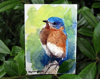 ACEO Limited Edition  1/25- Bluebird in summer
