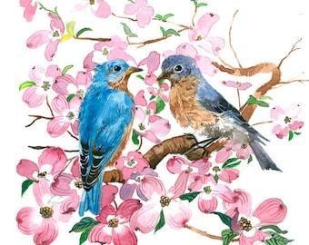 Art print - Bluebird in dogwood blossoms