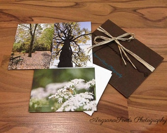 Nature photos, Earth Day, Fine Art Prints, Flat Note Cards, Bee, Queen Ann's Lace, Park, Tree, Nature, Celebrity gifting, typography, gift