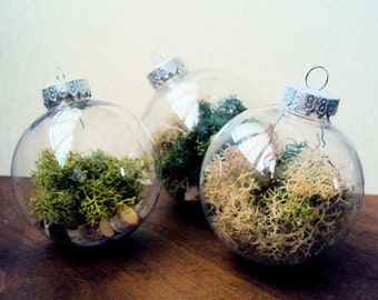 Set of Three Woodland Moss Ornaments Filled with Birch Slices - Rustic Christmas Decor - Fairy Bauble Tree Decoration - Woodland Birch Orb