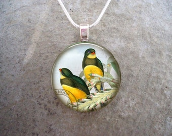 Bird Jewelry - Glass Pendant Necklace - Victorian Bird 48