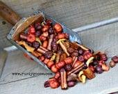 Harvest Potpourri, Harvest Primitive Fixins, Fall Potpourri