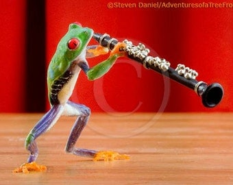 Clarinet Frog, clarinet, Music, Musical Instrument Humor Photo