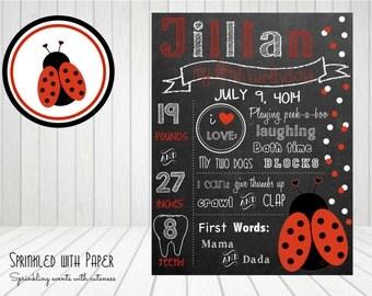 SALE- - -CUSTOM- Printable -Ladybug- First Birthday Chalkboard Sign- (SWP115)