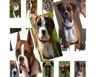 Boxers 1x2inch Domino Images Digital Collage 040