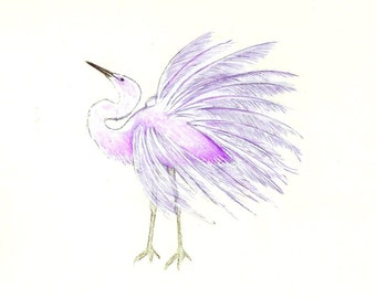 "Purple Egret art print of a drawing available 5x7"" or 8x10"""