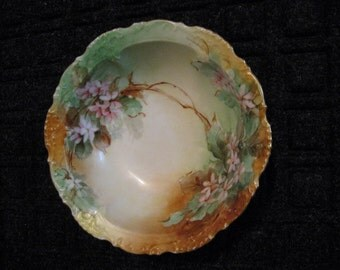 Gorgeous Hand Painted Berry Bowl-Austrian?