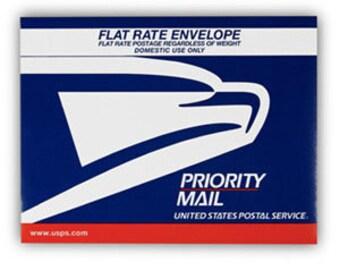 UPGRADE Priority Mail Express Envelope
