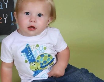 Boy Turtle Birthday theme shirt