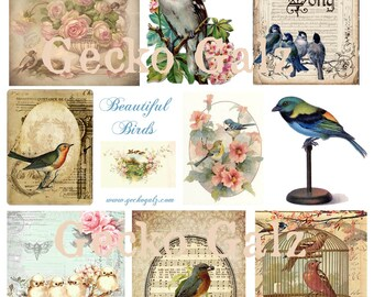 Beautiful Birds Digital Collage Sheet