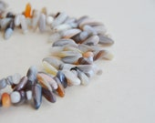mixed gray agate Tab beads 16 inches (1 strand)