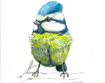 A5 Blue Tit Illustration PRINT